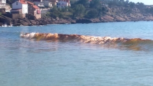 Aspecto da mancha vermella na praia do Pindo este luns - FOTO: Domingo Cambeiro