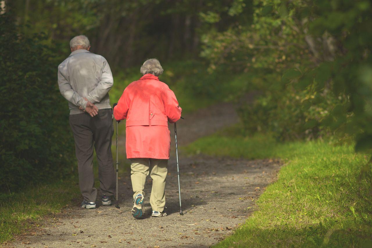 Las fuerzas de seguridad advierten de que uno de los colectivos m�s vulnerables suele ser el de las personas mayores