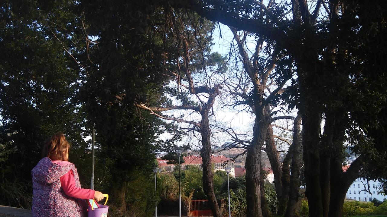 En el parque do Cotaredo (Fonti�as) empiezan a hacerse visibles los primeros signos del oto�o - FOTO: L.E.