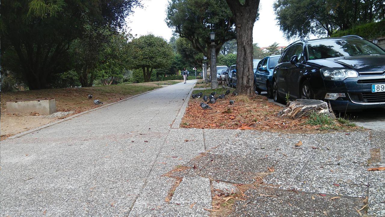 Acera en mal estado en la principal v�a de entrada al Campus Vida, la avenida da Coru�a - FOTO: L.E.